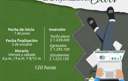 Diplomado de Administración de la Información en Excel